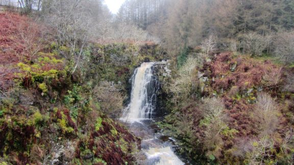 Walk 6 - Glenashdale Falls