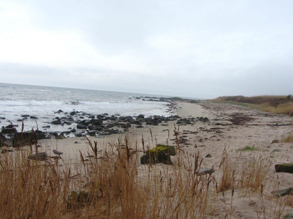 Walk 7 - Kildonan Beach