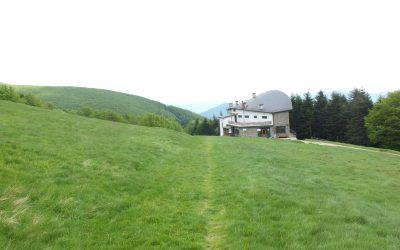 6 Rifugio Citta Di Forli Stands In A Vast Meadow