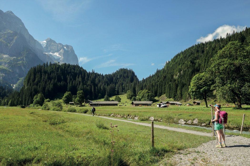 Alpine Pass