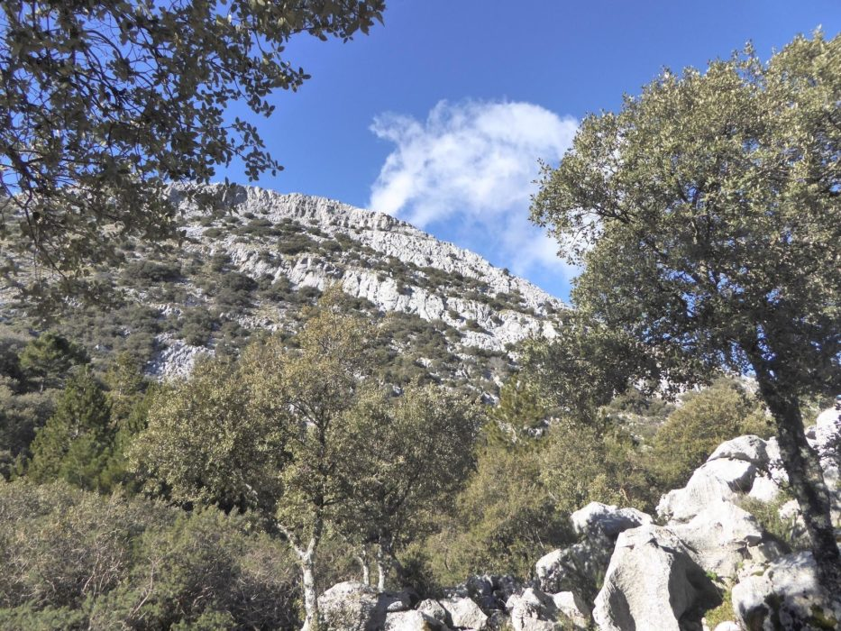 Grazalema The Southern Flank Of The Reloj Jpg