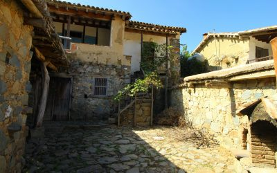 Courtyard Of A Traditional House