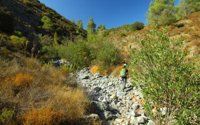 Crossing The Dry Streambed