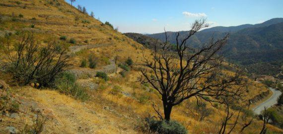 Cyprus: The tiny mountain village