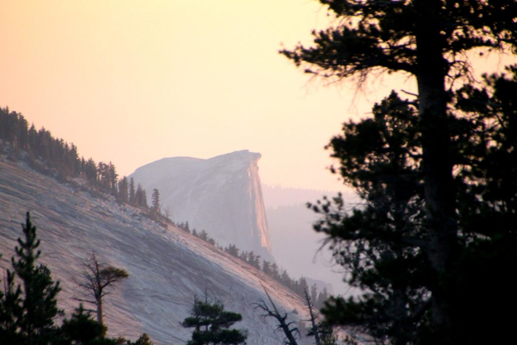 Evening Light On Half Dome