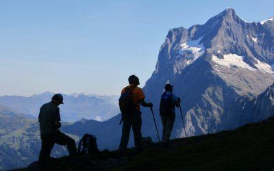The Wetterhorn Seen From The Eiger Trail