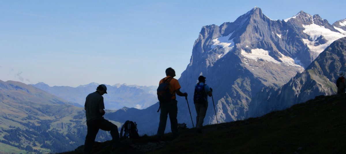 The Wetterhorn Seen From The Eiger Trail