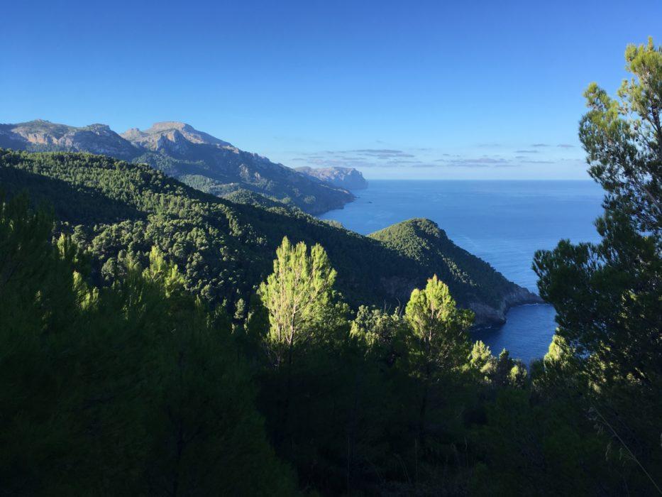 7 View Along Coast