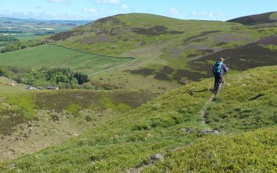 6 Walking On The Northern Edge Of The Cheviot Hills With The Hillfort Of Harehope Hill In The Background