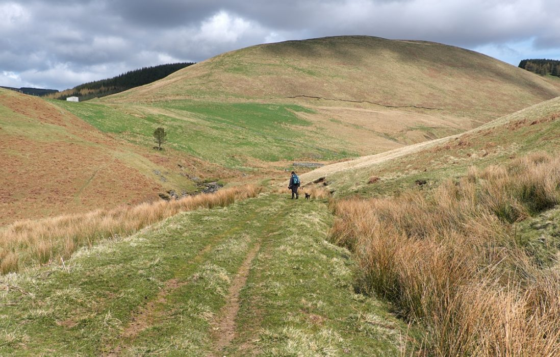 11 Clennell Street Heads Deep Into The Cheviot Hills