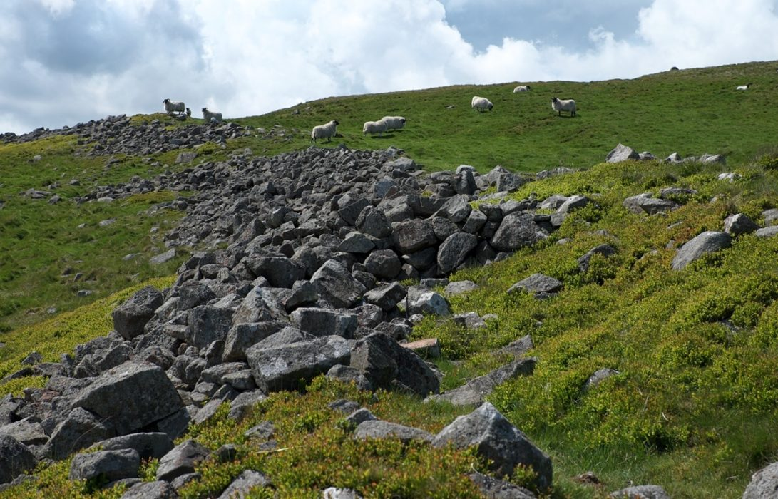 5 Stone Ramparts Of An Iron Age Hillfort On Yeavering Bell
