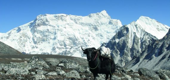 An intro to… Trekking in Bhutan