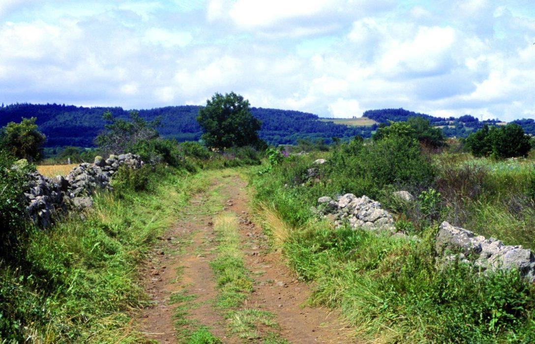 Pilgrim Path Between Liac And Lic