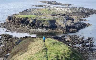 6 The Tail Of Rocks Niarby