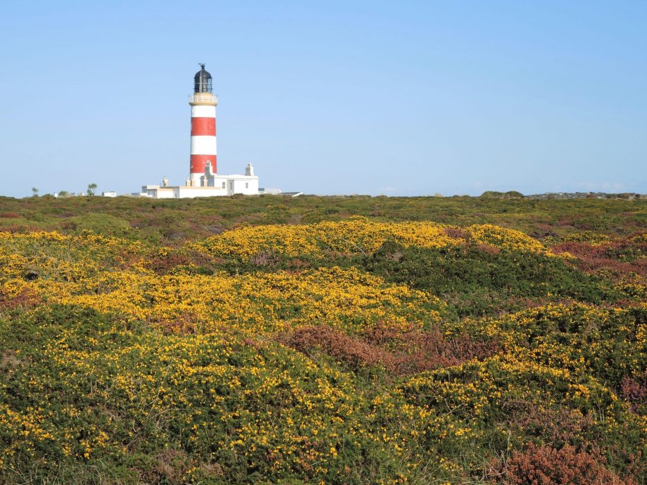11 Point Of Ayre Lighthouse: The Northernmost Tip Of The Walk