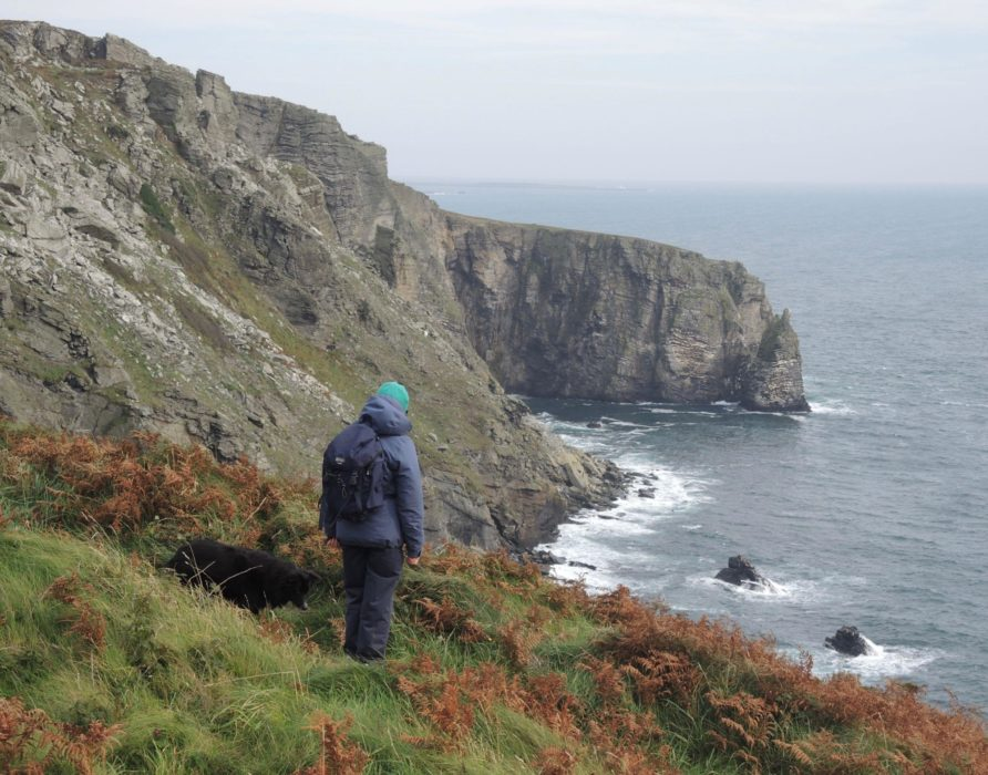 1 The Cliffs Of The Chasms And Sugar Loaf Sea Stack
