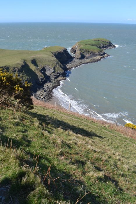 The tiny island of Ynys Lochtyn near Llangrannog