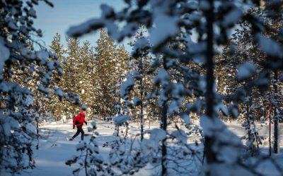 Ice Ultra 18 Yeti Nordisk 2 (Mikkel Beisner)