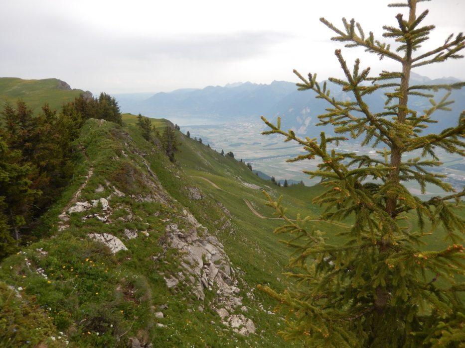 10  The Border Ridge At Col De La Foliere