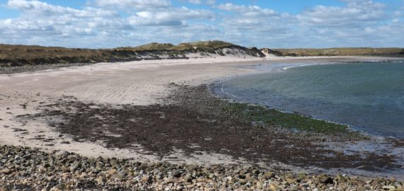 2 This Beach On Lindisfarne Is Typical Of Northumberland's Coastal Scenery