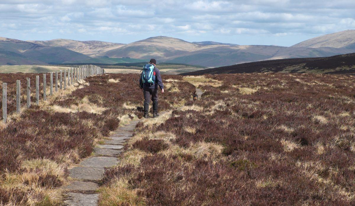 4 Walker On The Border Ridge In Northumberland