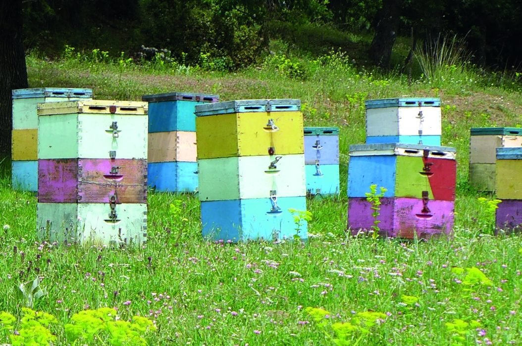 Beehives Near Nimfasia