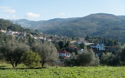 Central Camino: Countryside Views In Labruja