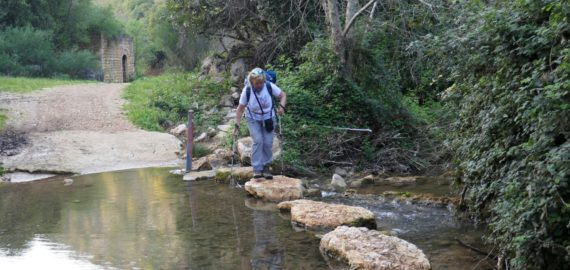 Banner The Khziv River Is Crossed By Stepping Stones