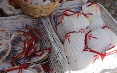 Scallop shells along the Camino