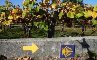 Waymarking on the Camino Portugues
