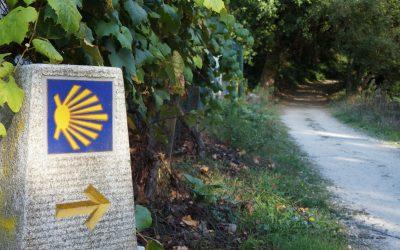 Camino Portugues Path Caminoways