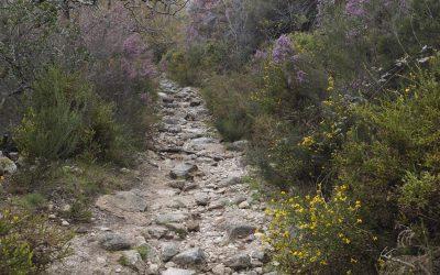 Minas dos Caris track