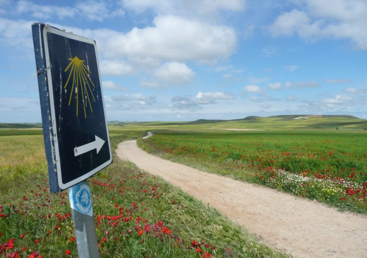 Discovering the joy of long-distance pilgrimage walking and why one camino is never enough.