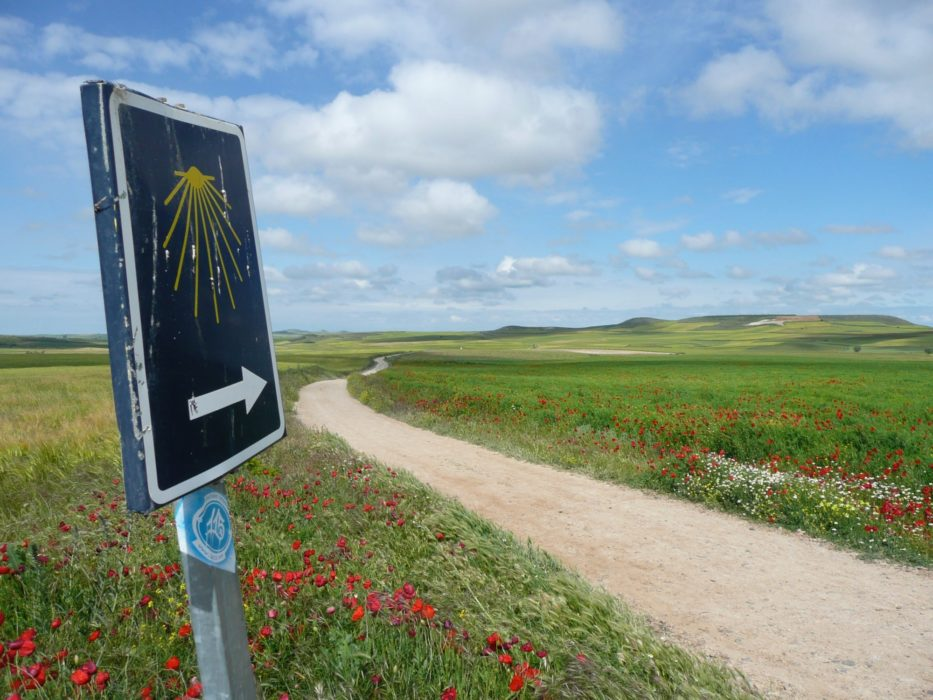 Lonely signs like this point the way along the Camino de Santiago pilgrimage trail. (Camino Frances of the Camino de Santiago)