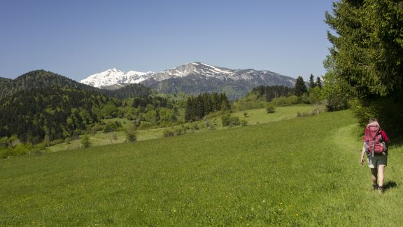 Distant views of the Pyrenees
