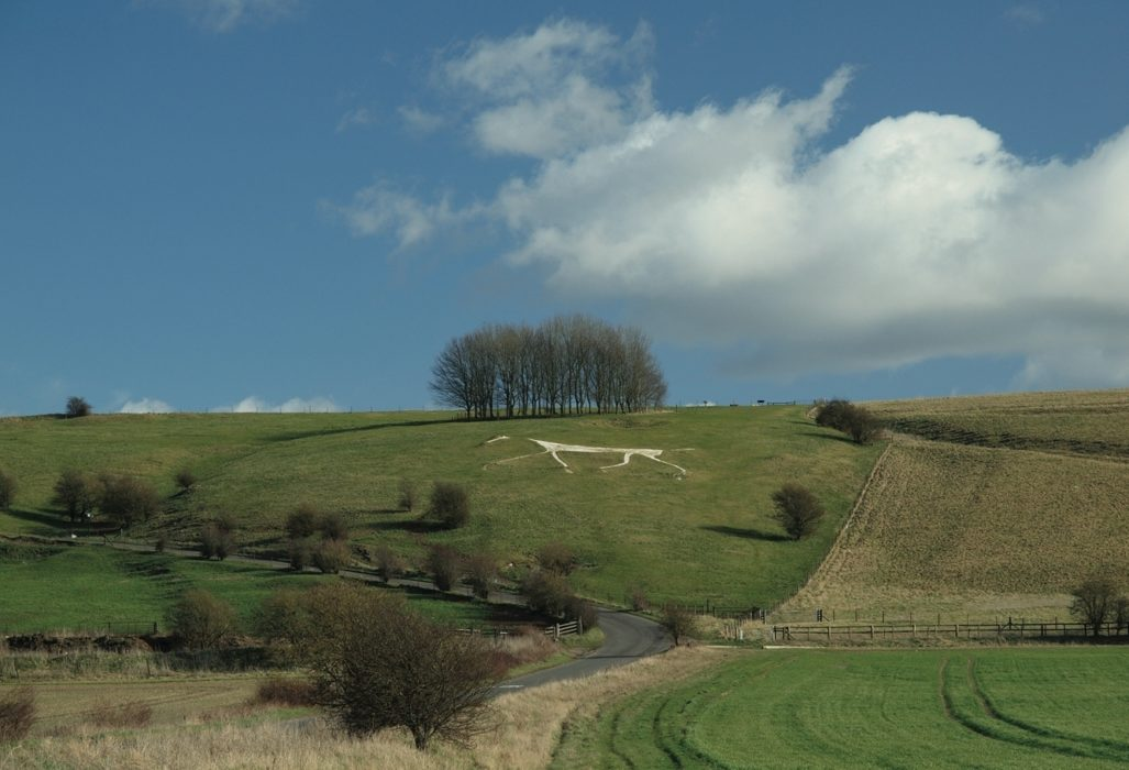 Looking up to Hackpen Hill white horse from the road to Broad Hinton (photo: Steve Davison)