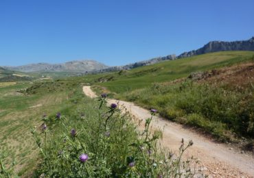 The track running westwards beneath La Sierra de Chimenea