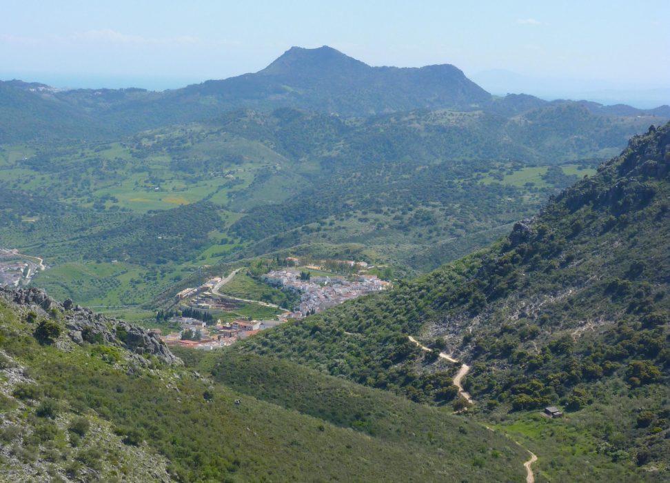 Descending towards Cortes de la Frontera
