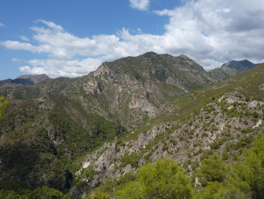 Looking northwest towards the Sierra de Almijara