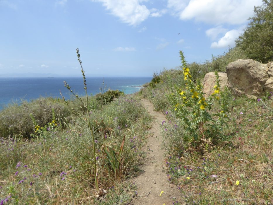 The coastal path leading towards Tarifa