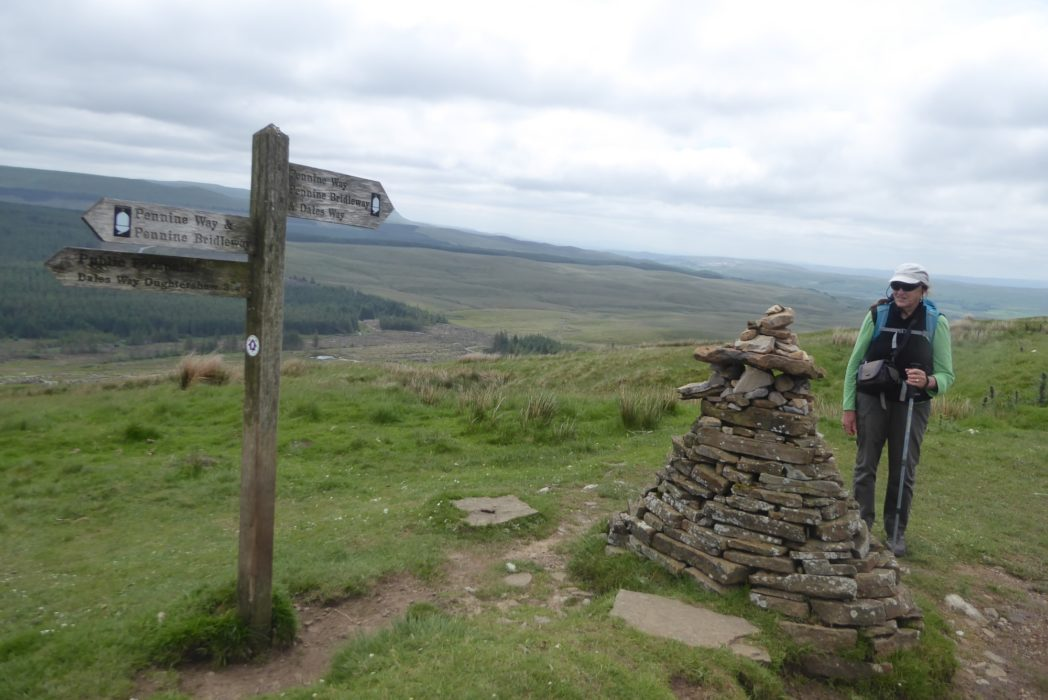 One of many signposts with the acorn logo along the Pennine Way (Day 1 - day 8 in the guide).