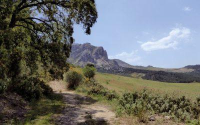 Following the northern slopes of the Sierra de Prieta towards El Burgo (Day 11)