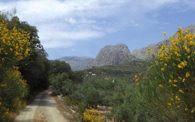 Heading west towards the Sierra de Enmedio (Day 6)