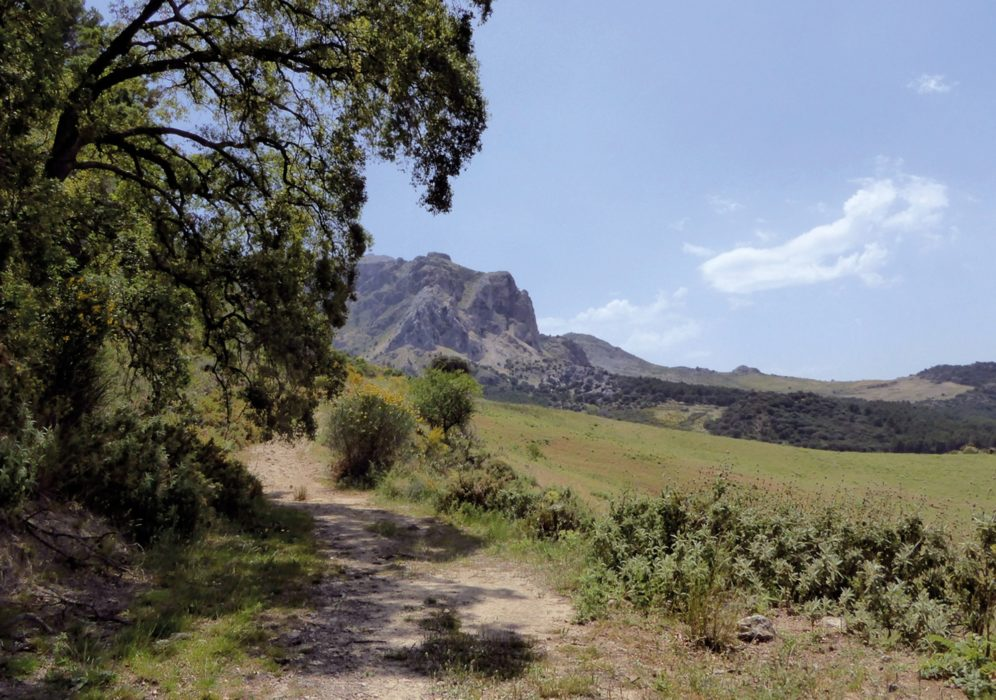 Following the northern slopes of the Sierra de Prieta towards El Burgo (Day 11)