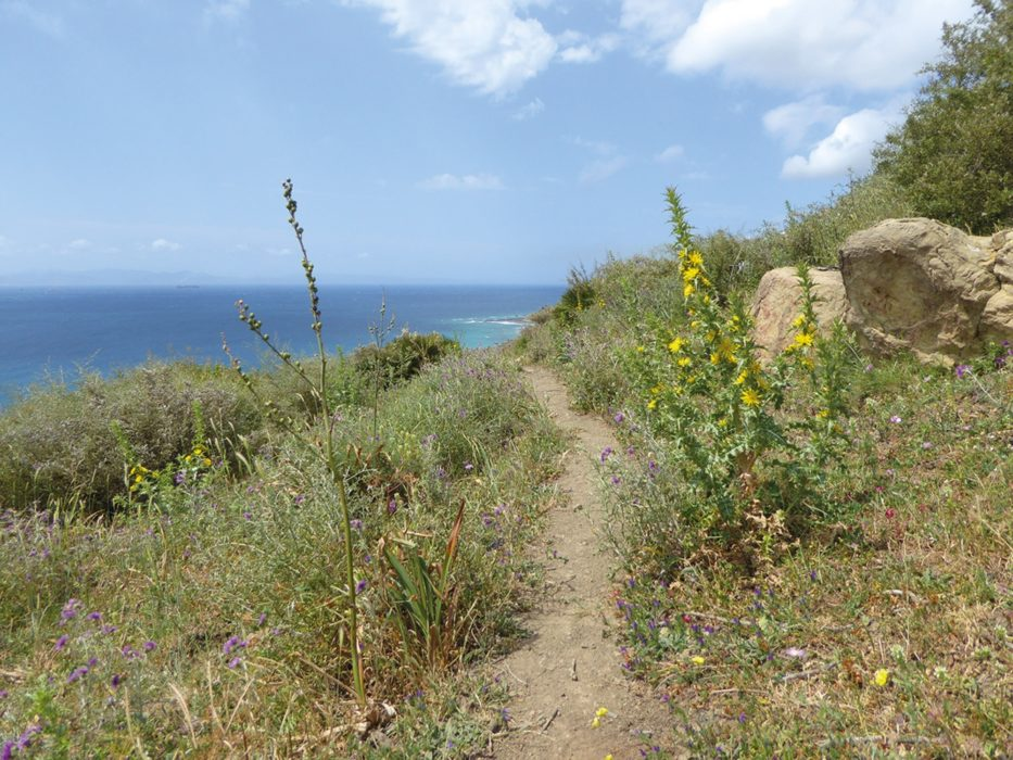 The coastal path close to Tarifa (Day 20)