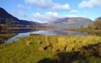 Muckross Lake and Purple Mountain