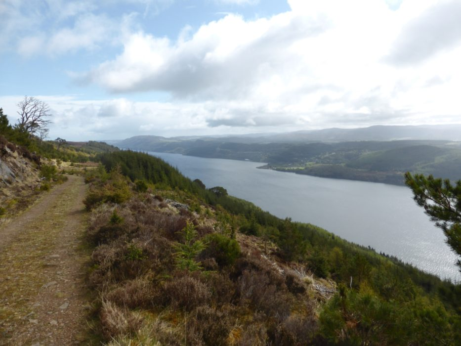 One of the forest tracks giving great views along Loch Ness