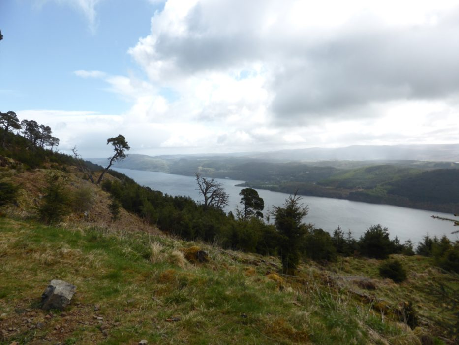 Views looking Northwards along Loch Ness