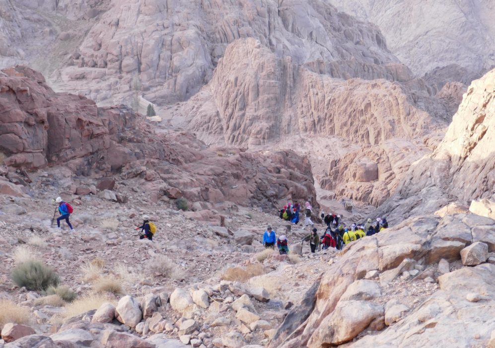 1000S Of Pilgrims Ascend Mt Sinai Every Day