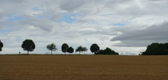 Fields, trees and big sky near Rosières-en-Haye (Lorraine)